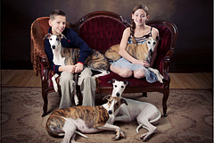 The Family of Aperture Whippets